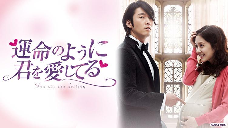 韓国ドラマ「運命のように君を愛してる」のメインビジュアル
