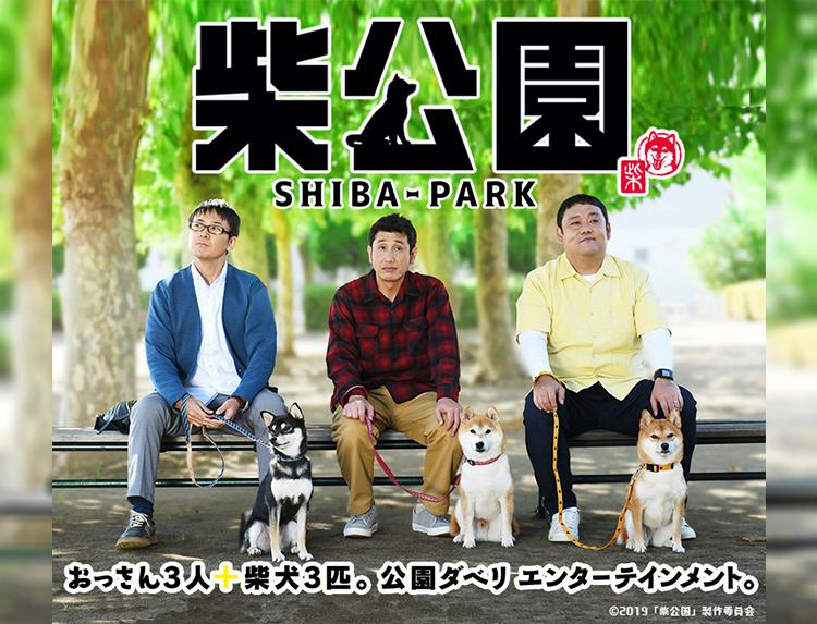 ドラマ「柴公園」のメインビジュアル