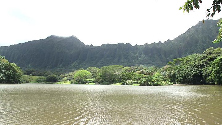 ホオマルヒア植物園(Ho'omaluhia Botanical Garden)