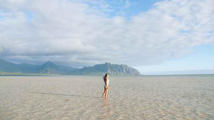 絶対楽しい!いま参加するべきオアフ島のオプショナルツアー
