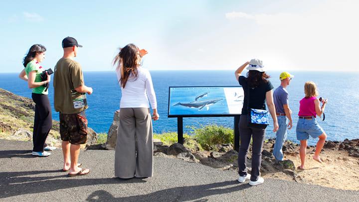 マカプウポイント・ライトハウス・トレイル Makapu'u Point Lighthouse Trail
