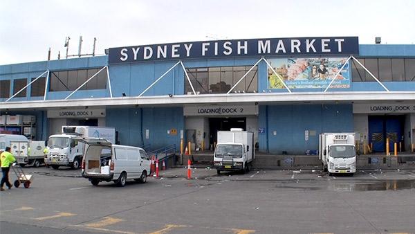 シドニー・フィッシュマーケット
