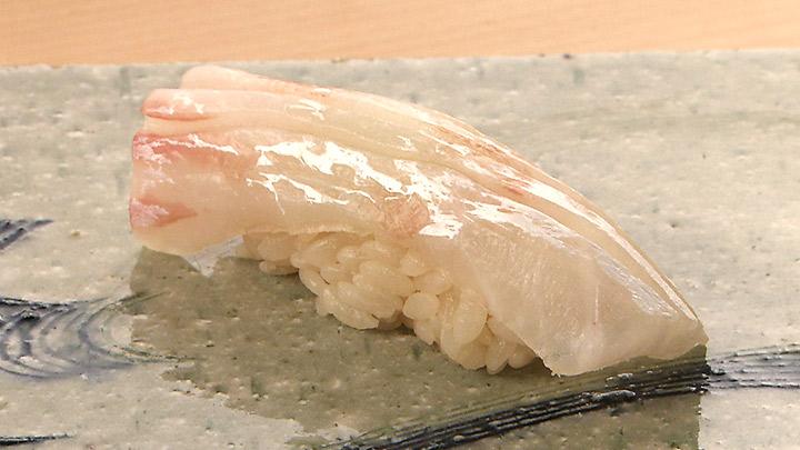 第51話 大阪・北新地「寿し おおはた」鯛 味の革命児