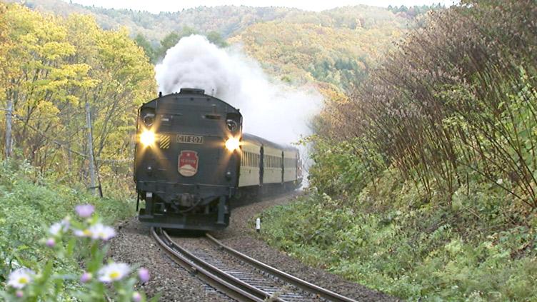 列車紀行 美しき日本のメインビジュアル