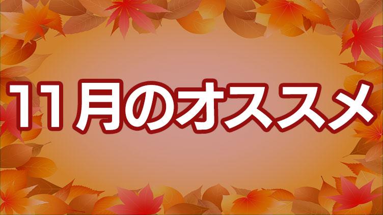 BS12 トゥエルビ 11月のオススメ番組はこちら!!のサムネイル