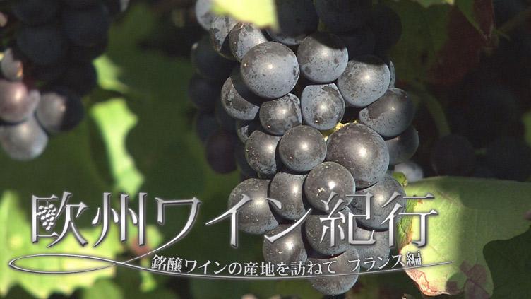 欧州ワイン紀行 ~銘醸ワインの産地を訪ねて~のサムネイル