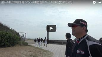 選手の秋季練習を見つめる伊東監督にカメラが接近